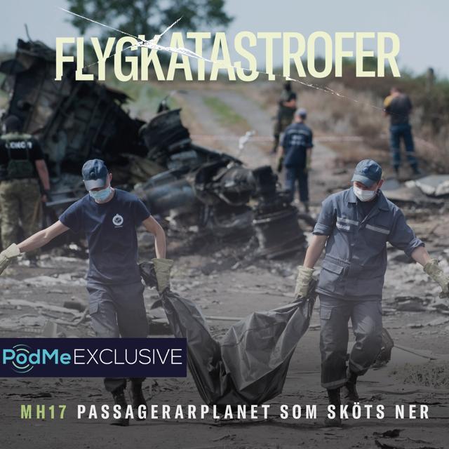 MH17 - Passagerarplanet som sköts ner