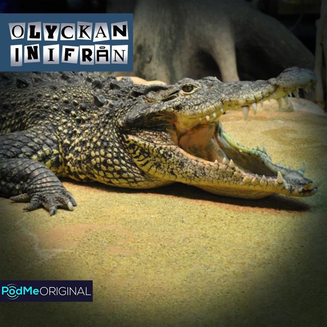 Krokodilattacken på Skansen