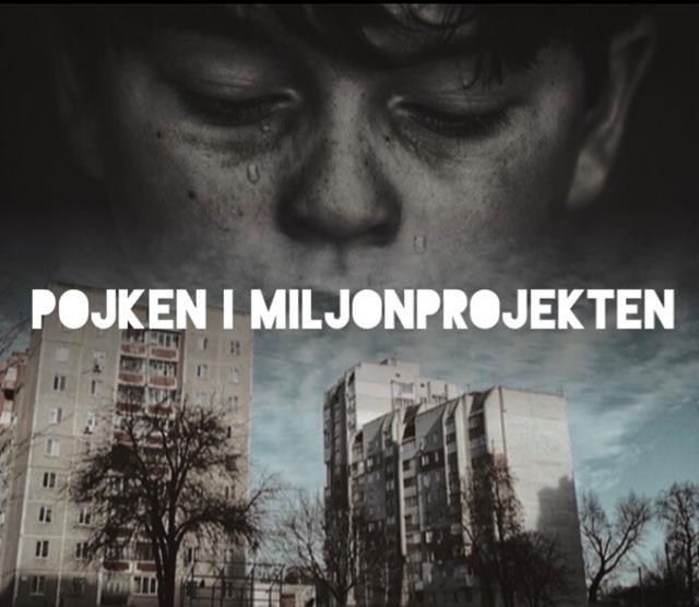 Pojken i miljonprojekten