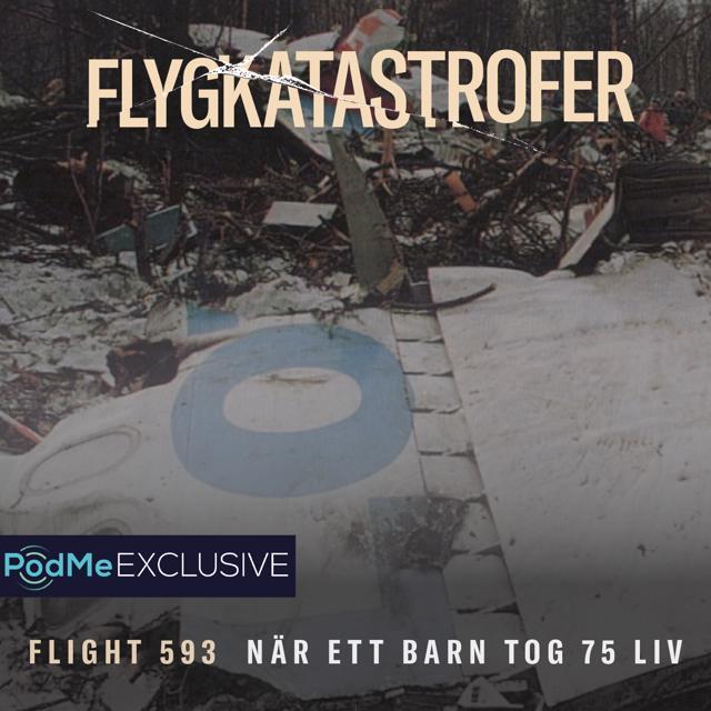 Flight 593 - När ett barn tog 75 liv